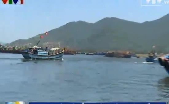 Ngư dân Đà Nẵng kiên cường bám biển