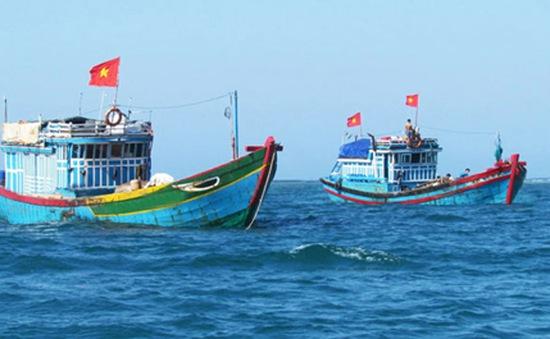 Hội nghề cá TP Đà Nẵng tiếp nhận 5 tỷ đồng hỗ trợ ngư dân