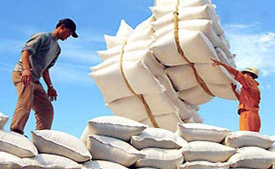 Đa dạng hóa thị trường xuất khẩu gạo