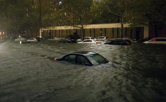 Cẩn thận mua nhầm xe hỏng do bão Sandy