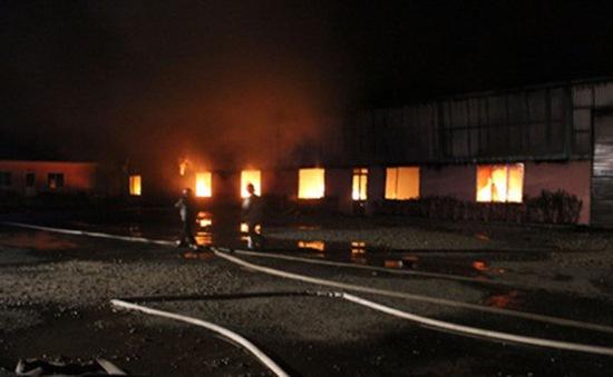 Cháy lớn tại Công ty cổ phần Rừng Hoa Đà Lạt