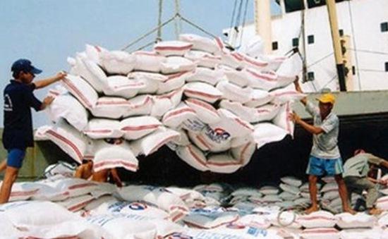 Tín hiệu lạc quan về xuất khẩu gạo