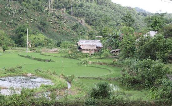 Bí ẩn dân tộc Thủy giữa đại ngàn Việt Bắc (Kỳ 2)