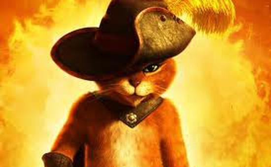 "Xem ""Puss in Boots""  trên Star Movie"