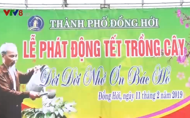 Image result for tết trồng cây