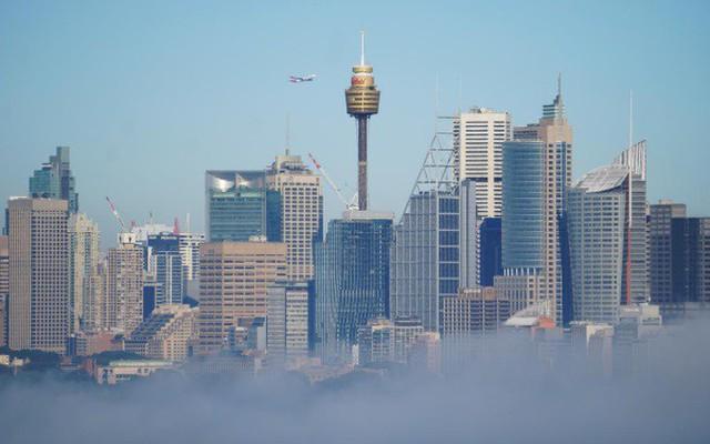 Kết quả hình ảnh cho sương mù ở úc