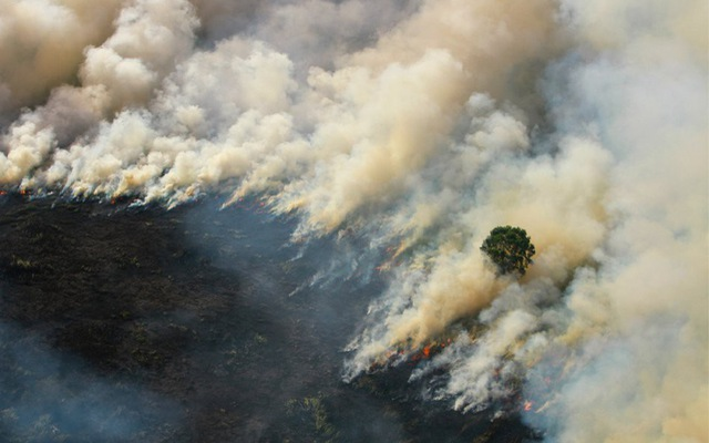 Haze blankets Southeast Asian countries