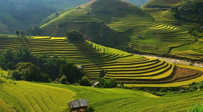 Mu Cang Chai listed among 30 most beautiful destinations