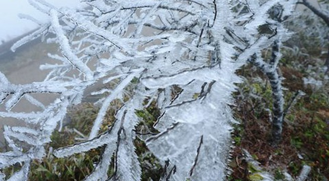 Northern mountainous provinces experience severe cold