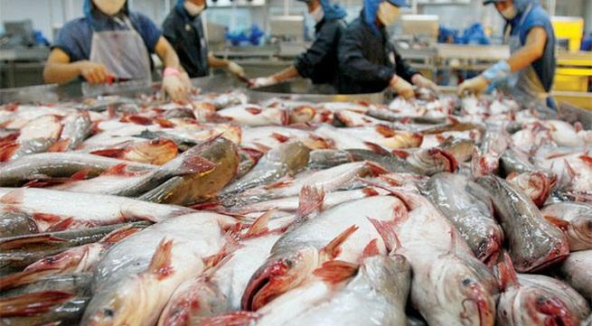 EC starts inspection of Vietnam's fisheries