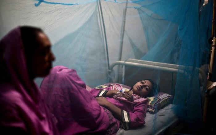 Dịch sốt xuất huyết lây lan mạnh ở Mexico