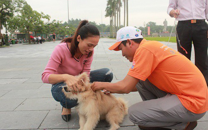 Nghệ An: Tăng cường phòng, chống bệnh dại trong mùa nắng nóng