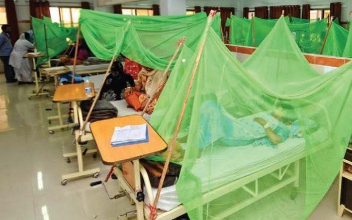 Dịch sốt xuất huyết hoành hành tại Pakistan