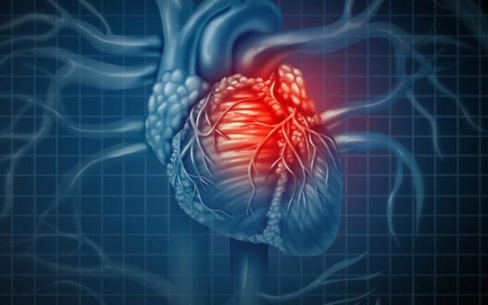 Mô tim 3D - hy vọng mới cho người bệnh tim - xổ số ngày 13102019