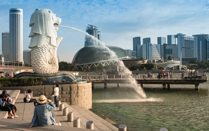 Singapore ra mắt ứng dụng giúp hạn chế sự lây lan của COVID-19