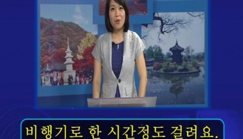 Tiếng Hàn: Xin chào Hankuko trung cấp - Bài 11