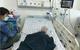 Rắn lục đuôi đỏ cắn, bé trai 20 tháng tuổi bị rối loạn đông máu nặng