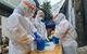 Tối 15/6: Thêm 213 ca mắc COVID-19 mới, 303 bệnh nhân được công bố khỏi bệnh