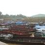 Có 17 khu neo đậu cho tàu thuyền tránh trú bão số 4