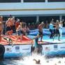 2.000 người thi bơi từ châu Á sang châu Âu