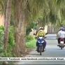 Người dân Khmer vùng cách mạng vượt khó làm giàu
