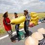 """Thương lái ráo riết thu mua nhưng nông dân đã """"sạch bách"""" lúa"""