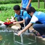 Ứng dụng công nghệ robot trong... múa rối nước
