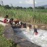 Liên tục xảy ra các vụ tai nạn đuối nước tại Tây Nguyên