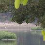 Ao hồ bị san lấp góp phần tăng ngập úng