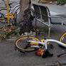 Australia: Dịch vụ chia sẻ xe đạp gặp rắc rối vì xe... vứt khắp nơi
