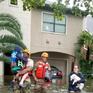 Mỹ nghi ngờ sự liên quan của đợt bão năm 2017 với biến đổi khí hậu