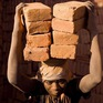 Báo động vấn nạn nô lệ thời hiện đại