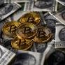 Việt Nam nằm trong nhóm quốc gia đầu tư nhiều vào Bitcoin nhất thế giới