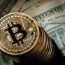 Sàn giao dịch Bitcoin BTC-e ngừng giao dịch sau bê bối rửa tiền