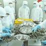 Mỹ tăng thuế chống bán phá giá với tôm Việt Nam