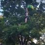 Mỹ: Cứu sống cô gái rơi từ cáp treo