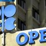 OPEC chưa nhất trí về việc cắt giảm sản lượng dầu