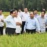 Phát triển nông nghiệp bền vững, phòng chống thiên tai và sạt lở ở ĐBSCL