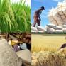 Nghị quyết của Chính phủ về phát triển bền vững Đồng bằng sông Cửu Long