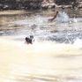 Dạy trẻ kỹ năng phòng chống đuối nước