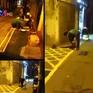 Làn đường ưu tiên cho người đi bộ đầu tiên ở Hà Nội