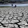 Hiện tượng El Nino có thể quay lại trong năm nay