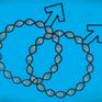 Phát hiện gen liên quan đến đồng tính