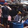 Thừa Thiên - Huế phát triển hậu cần nghề cá