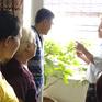 Hà Nội: Lập tổ tình nguyện hướng dẫn người dân phòng sốt xuất huyết