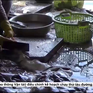 Vũng Tàu: Kinh hoàng công nghệ chế biến cá khô ở làng chài Đất Đỏ