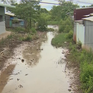 Bạc Liêu: Kênh thủy lợi bị bồi lấp, người dân không thể lấy nước sảnxuất