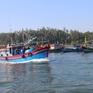 Quảng Bình kiểm soát khai thác hải sản tận diệt