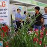 Chuẩn bị tổ chức Tuần lễ An ninh lương thực APEC 2017 tại Cần Thơ