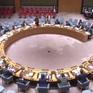 Việt Nam cam kết giải trừ quân bị và chống phổ biến vũ khí hủy diệt